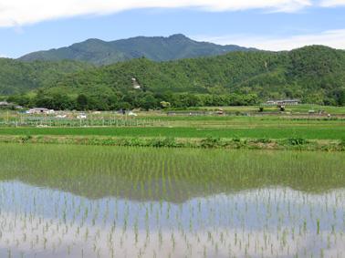 atagoyama0604.jpg